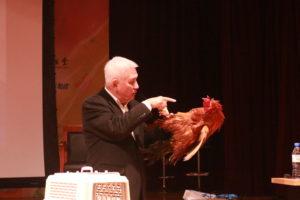 解釋動物催眠從現場示範開始,這隻公雞是向一位住在基隆的學員借來的,牠非常兇在雞群裡所有母雞都歸牠管是雞群裡的老大,主人進到雞舍牠會攻擊因為雞舍是牠的地盤,今天我把牠催眠了讓牠知道誰才是真正的老大。